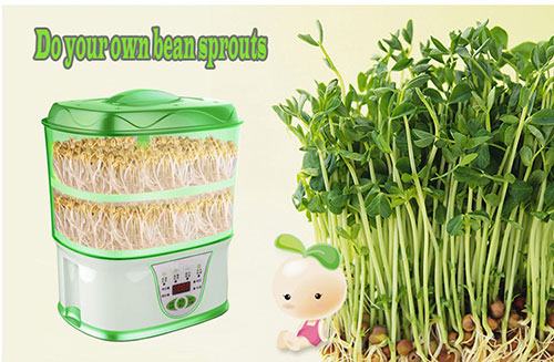 Multiple function Intelligent home bean sprout machine